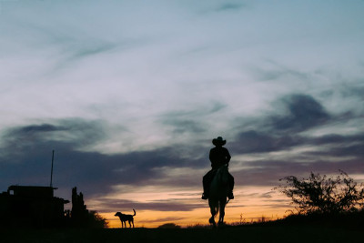 Man riding a horse at dawn with a dog beside him